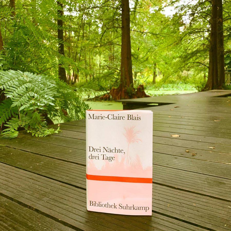 Marie-Claire Blais - Drei Nächte, drei Tage